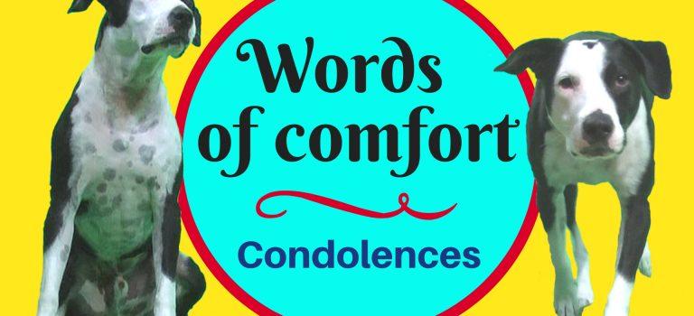 condolences grief